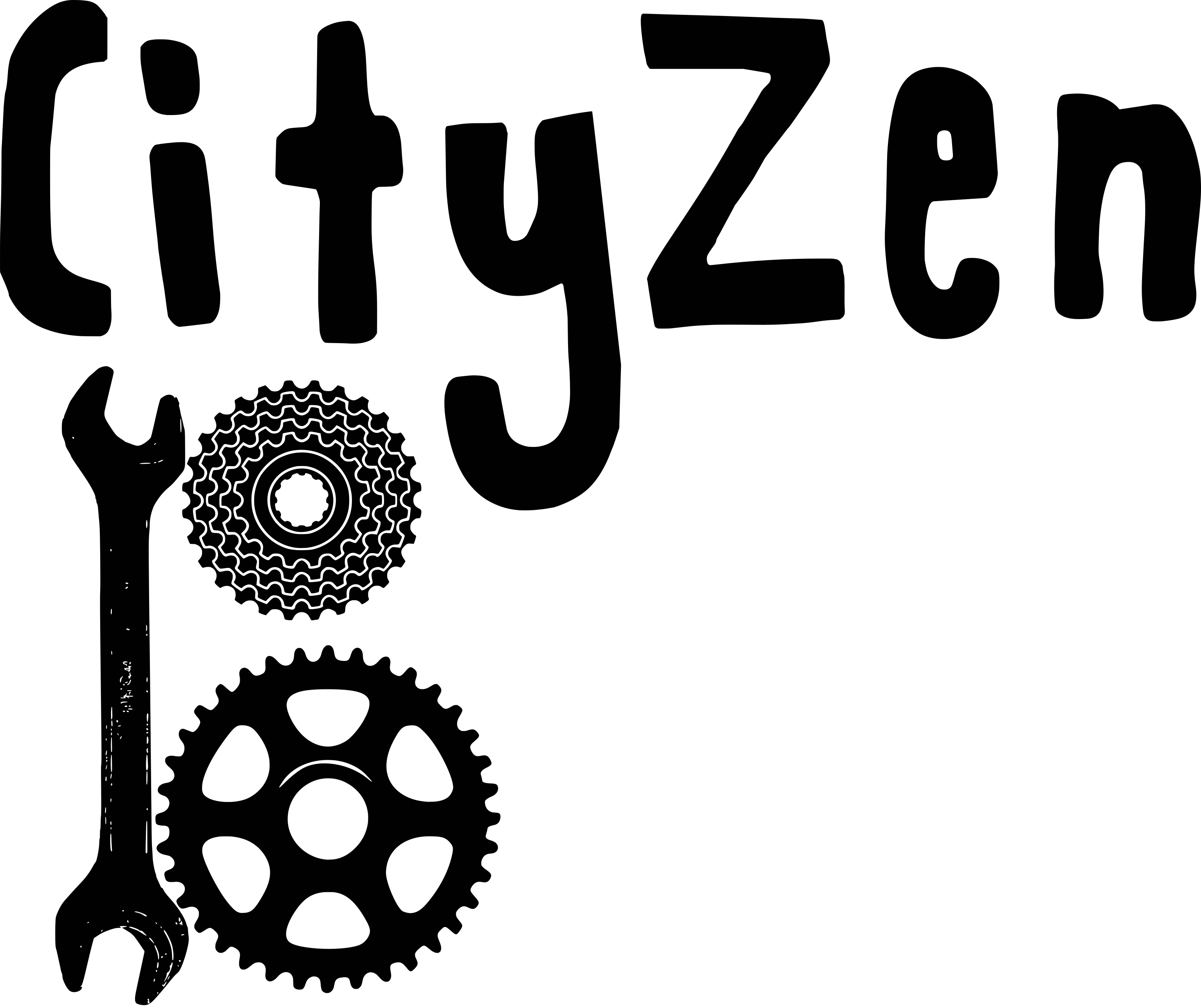 CityZen'Bike